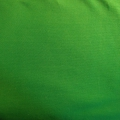 Bio-Jersey grün