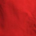 Bio-Jersey rot