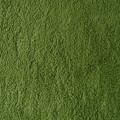 Baumwollfleece grün