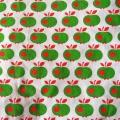 Apfel grün rot
